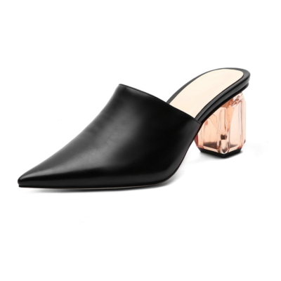 Black Women's Clear Block Heel Matte Mules Slip-on Pointed Shoes