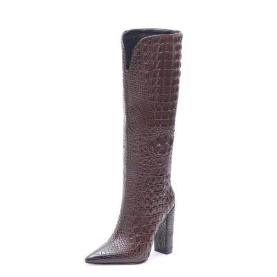Brown Croc Embossed Pointed Toe Chunky Heel Knee High Boots