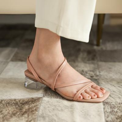 Nude Trendy Open Toe Clear Chunky Heel Sandals